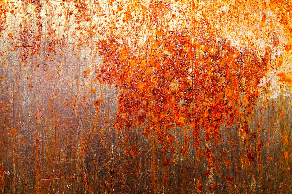 Autumn Rust